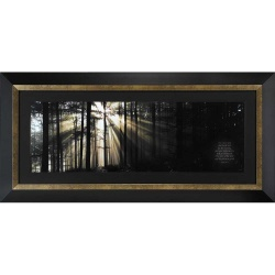Image For Forest and Sunlight