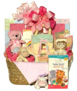 Image For Baby Noah Gift Basket in Pink
