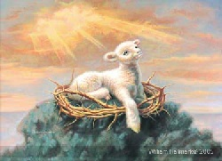 Image For Behold the Lamb by William Hallmark 8x11